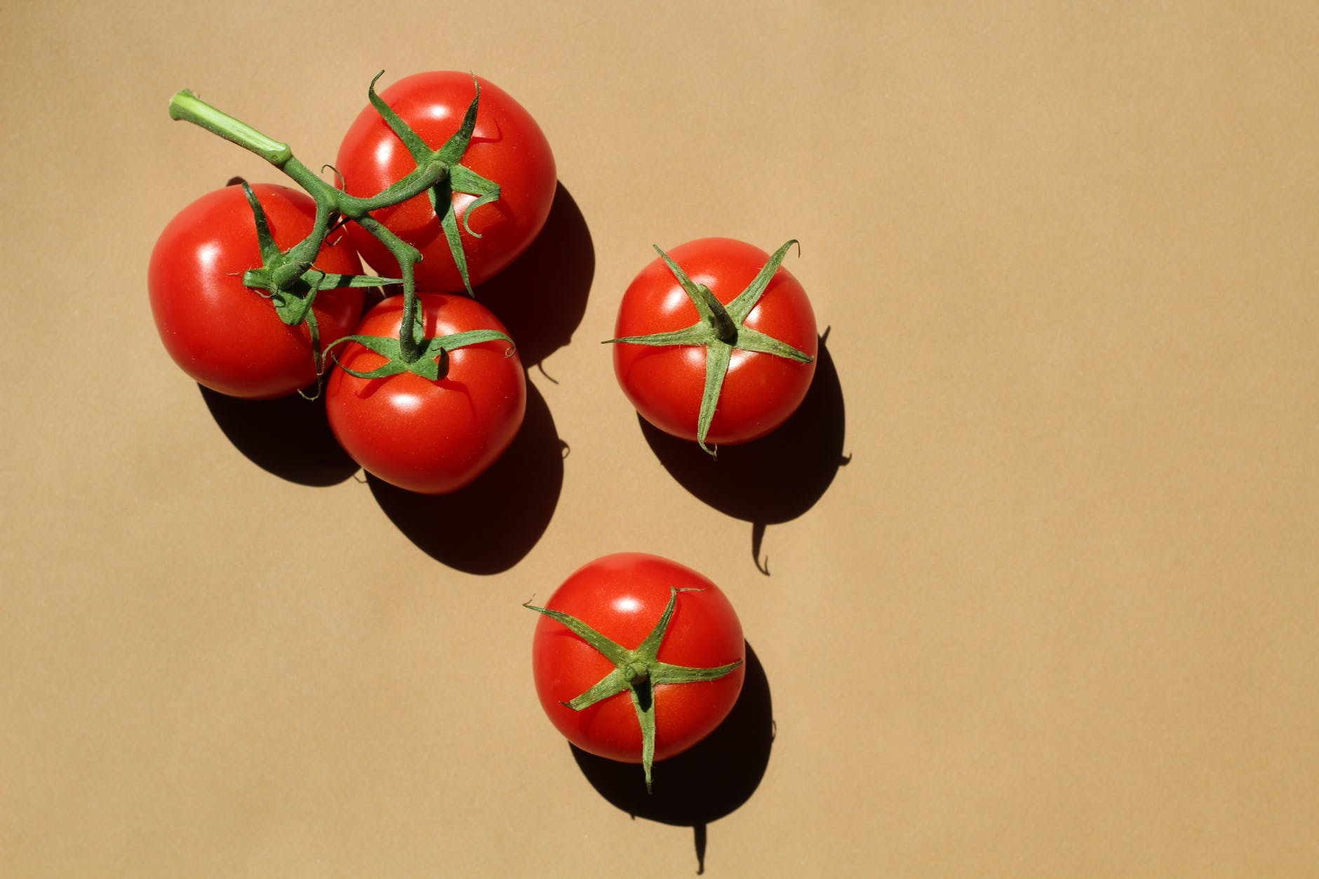 food tomatoes leaf cherry